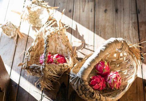 8月3日~自生植物の民具たち「種水土花展」開催します!